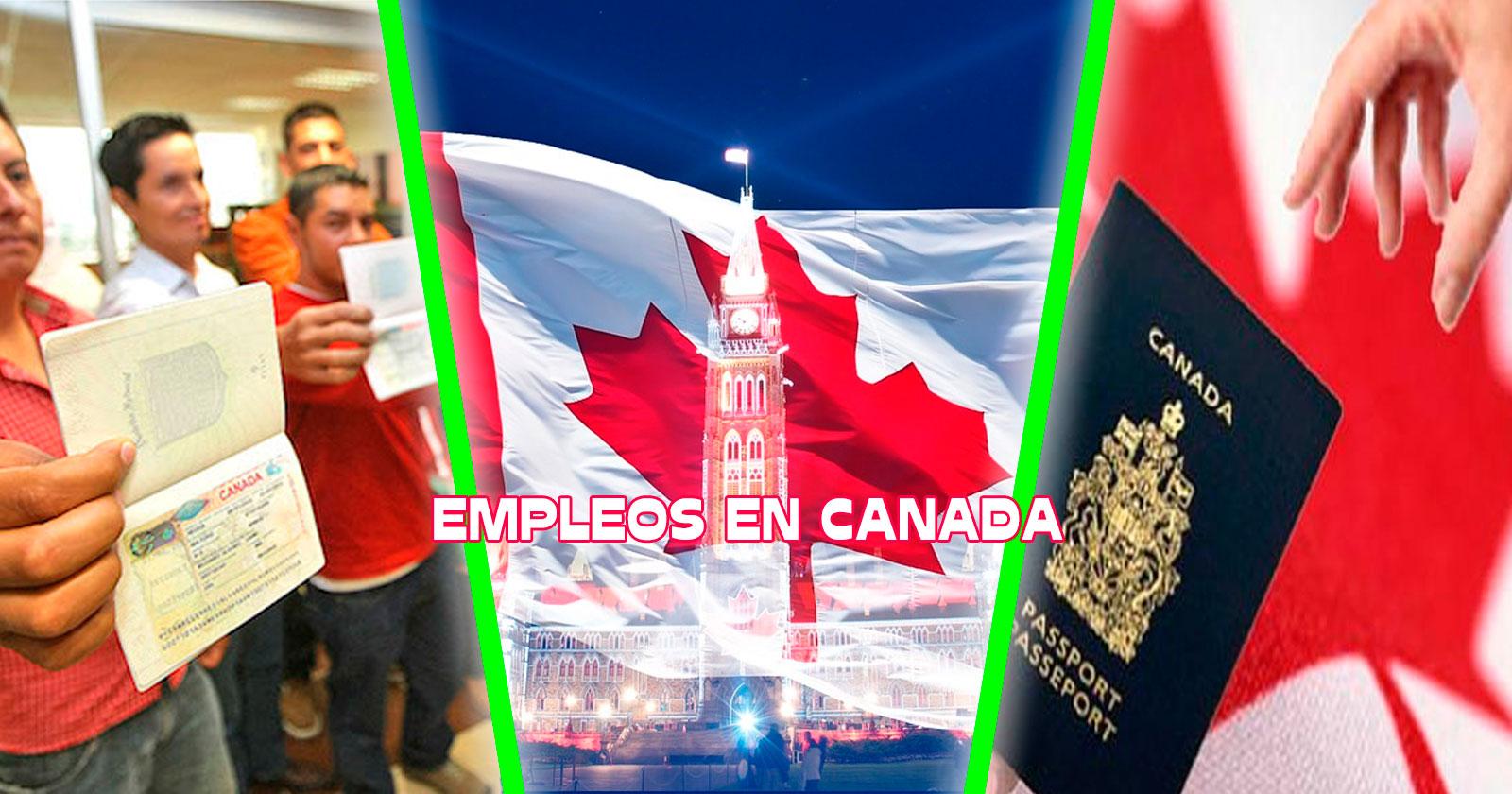 15+ Vacante De Trabajo En Canada Pics